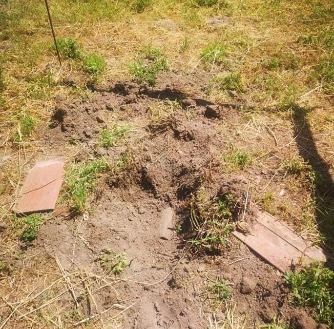 A Neszmélyi Polgárőr Egyesület tagjai, Dunaalmáson egy II. világháborús robbanó töltetet őriztek.